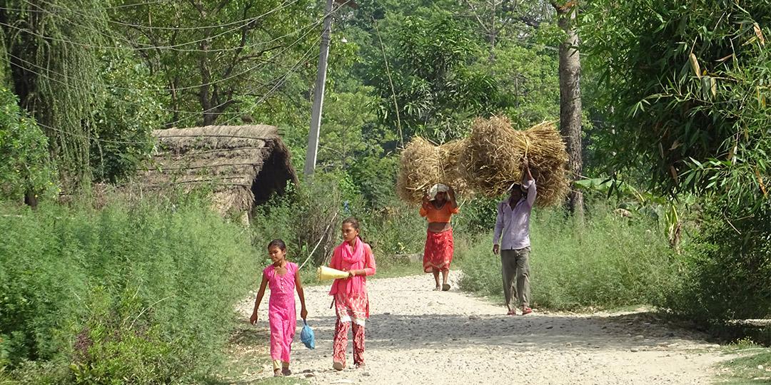 Surrounding village life