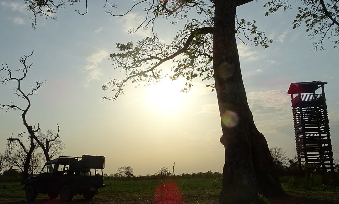 Sunset Bardia National Park